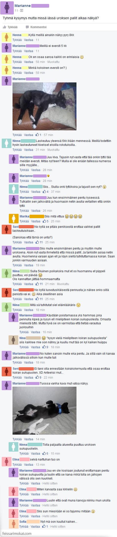 www iso Panis suku puoli