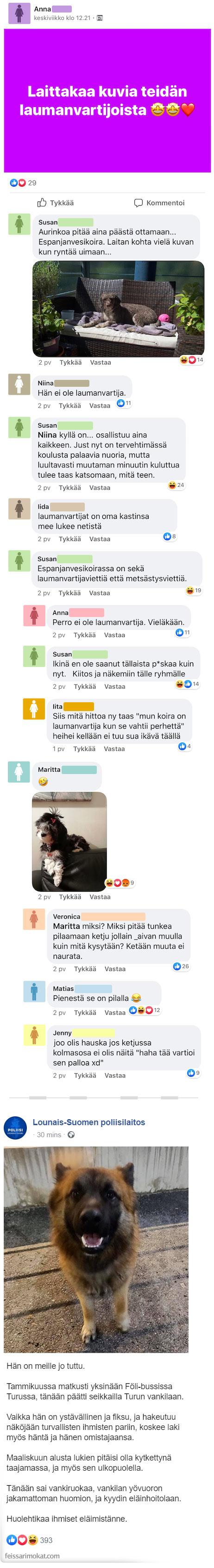Koiranomistajat, osa 15
